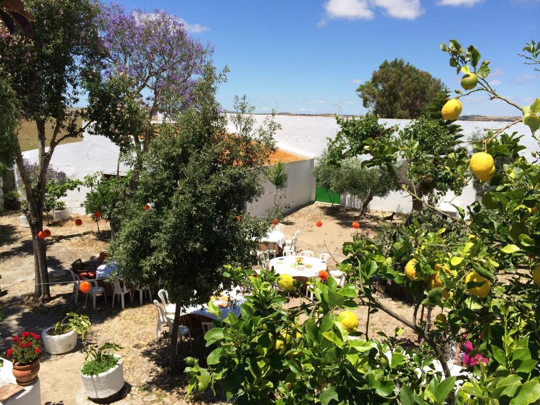 Tunnelmallinen Campo -maatila otti vieraat sydämellisesti vastaan kukkivien hedelmäpuiden varjoon