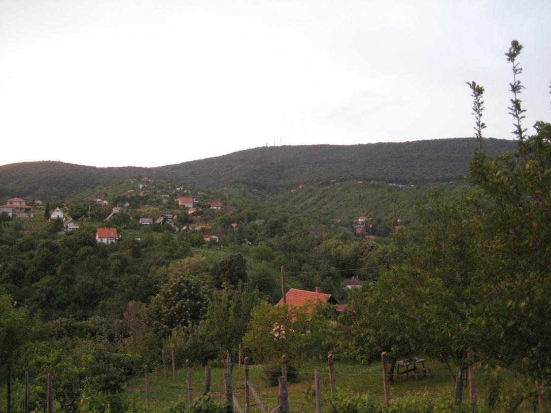 Eniten odotan rauhaa ja viinitilalta avautuvaa maisemaa sekä ystävien tapaamista ja rentoa yhdessäoloa.