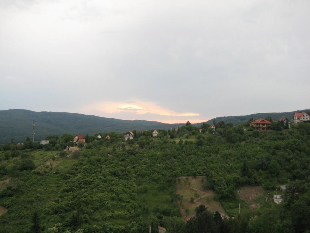 maisema viinitila