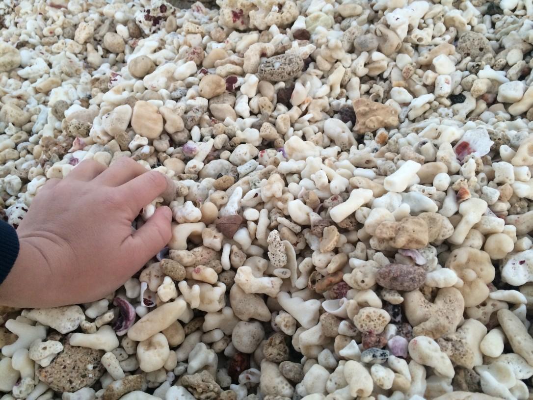Avomeren puoleisella rannalla on ihana koralliranta, jossa voi käydä ihastelemassa todellisia meren aarteita.