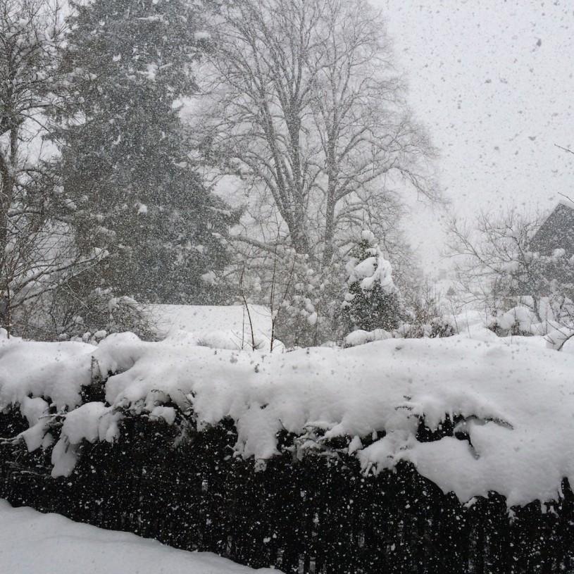 Sunnuntaina heräsimme sankkaan lumisateeseen.