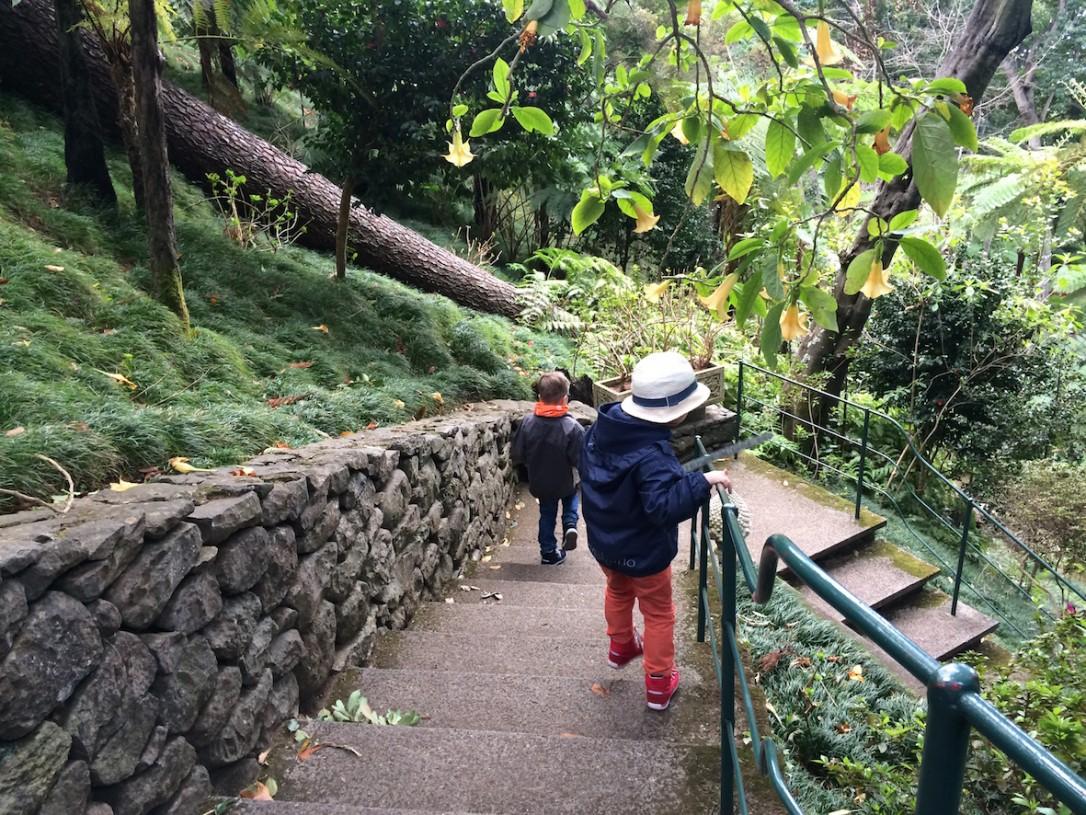 Madeiran puistoissa riittää portaita, joissa kuluttaa energiaa