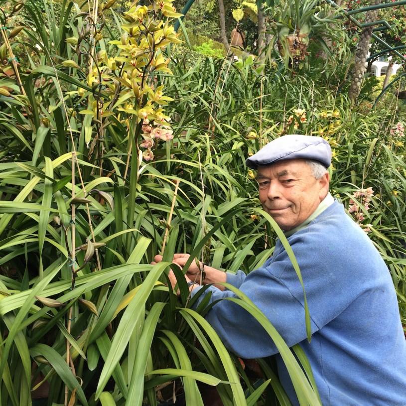 Puistoissa pääsee tapaamaan myös paikallisia puutarhureita