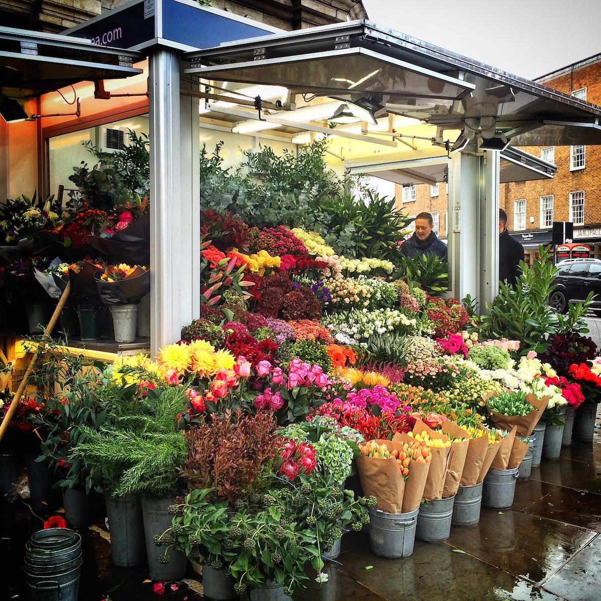 Lontoossa ihanat kukkapuodit joka kulmassa ilahduttivat muuten harmaata ja sumuista katukuvaa.